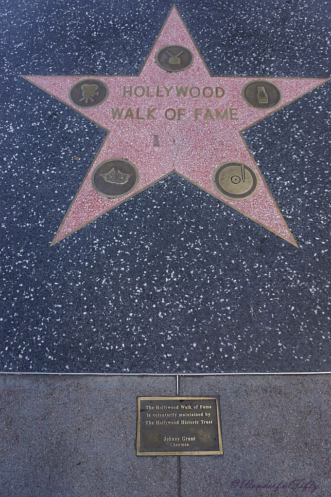 Walk of Fame- Star