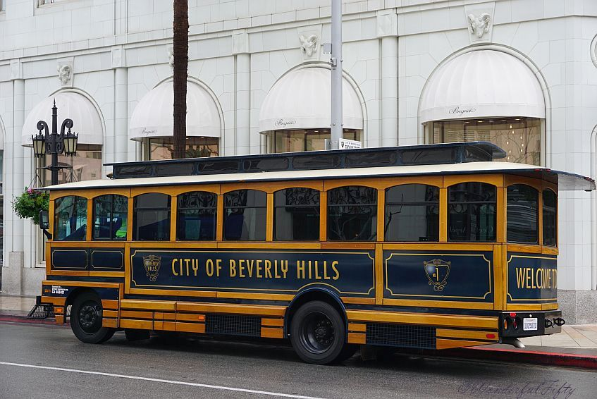 Beverly Hills Bus