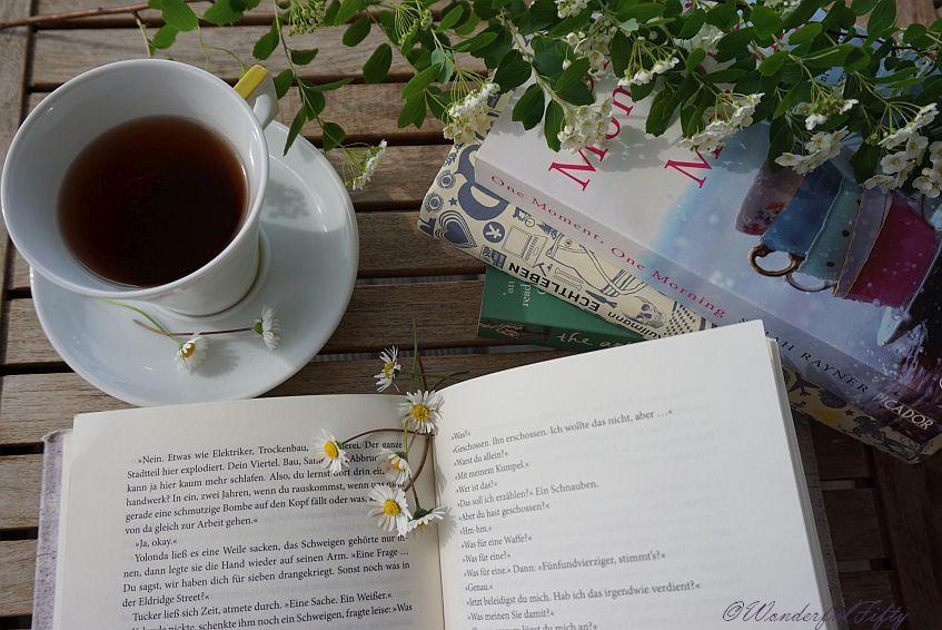 Buch - Frühling
