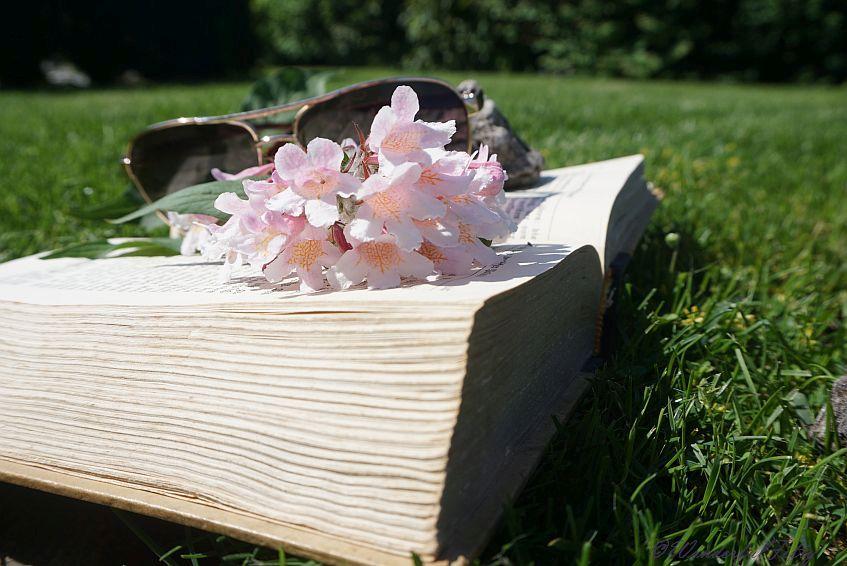 Buch-Wonderfulfifty