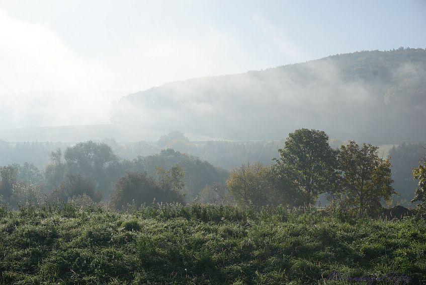 Herbst-Wonderfulfifty