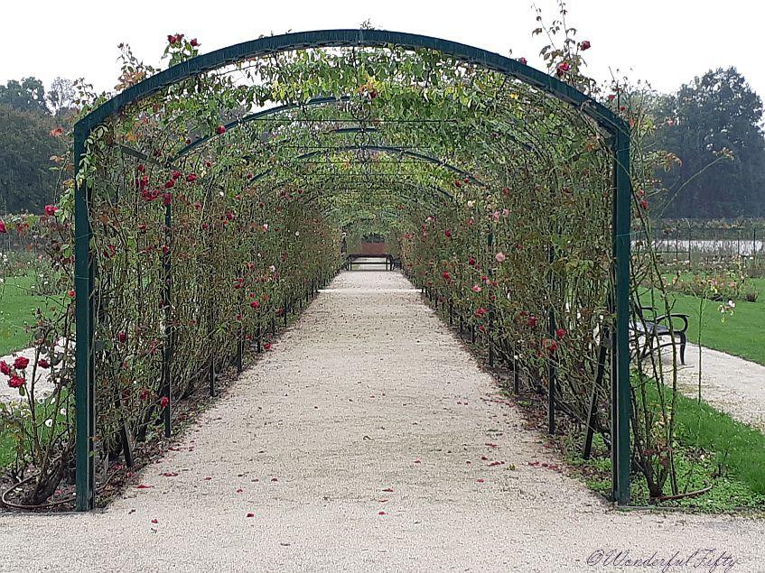 SchlossEsterhazy-Wonderfulfifty