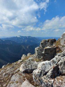 Berg-Wonderfulfifty